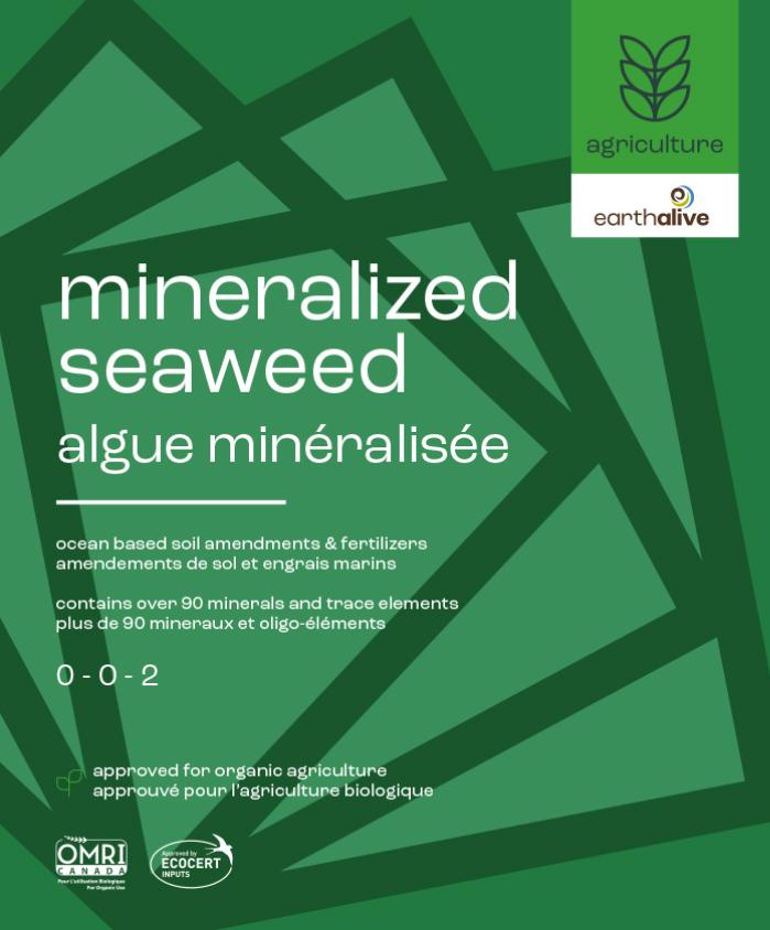 Algues minéralisées